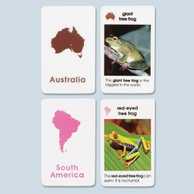 World Amphibians Cards