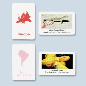 World Reptiles Cards - Primary