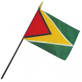 Guyana Nation Flag