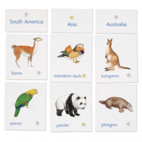 Animals of Seven Continents Classification Cards with Labels