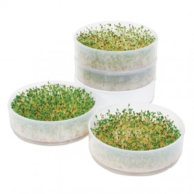 Four-Tray Seed Sprouter