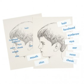 Face Labels