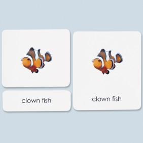 Fish Three-Part Photo Cards