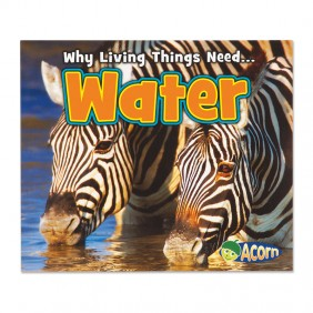 Why Living Things Need Water