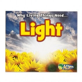 Why Living Things Need Light