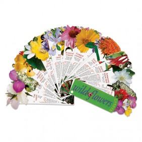 Wildflowers Fandex