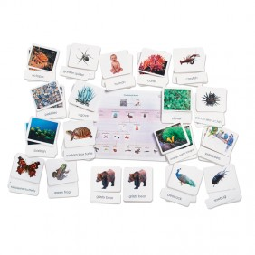 Complete Natural World Classification Package