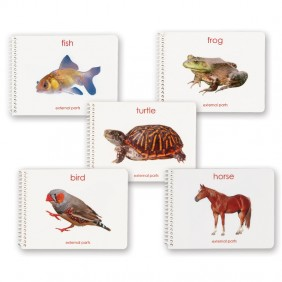 Parts of the Vertebrates Booklets