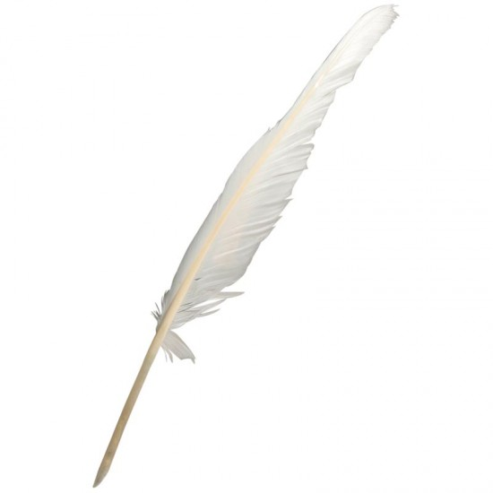Make Your Own Goose Quill Pen - Montessori Services