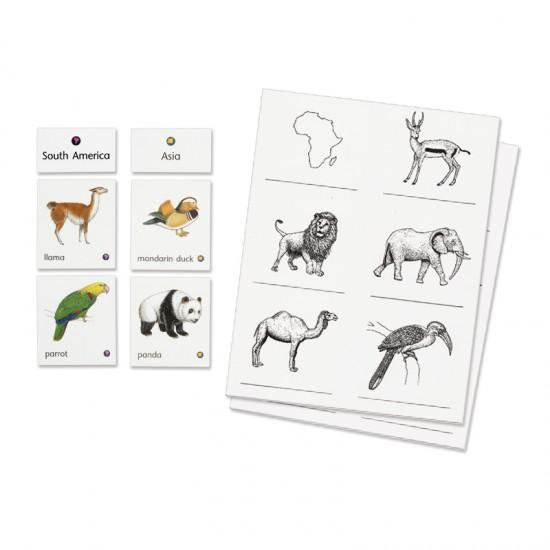 Animals of Seven Continents - Montessori Services