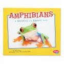 Amphibian