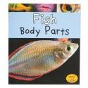 Fish Body Parts