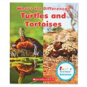 What's the Difference? Turtles and Tortoises