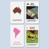 Unlaminated Primary World Amphibians Cards