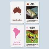 Unlaminated Primary World Amphibians Cards