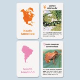 Elementary World Amphibians Cards