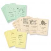 Geologic Eras, Periods, & Fossils Book Set