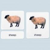 Adult Farm Animals