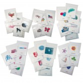 All 5 Sets of Phonetic Reading Cards