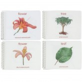 Set of all Four Botany Booklets