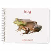 Parts of the Frog Booklet
