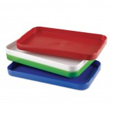 Large Plastic Tray
