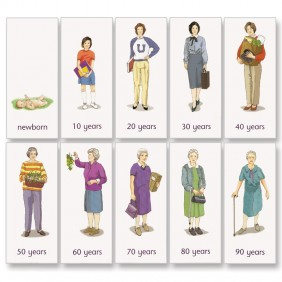 Human life sequence montessori services sciox Choice Image