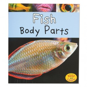 Fish Body Parts