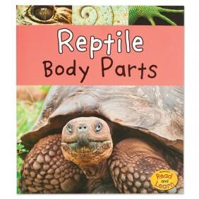 Reptile Body Parts