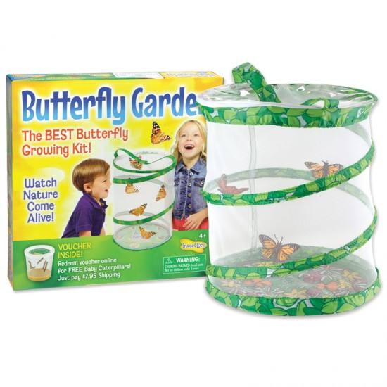 Butterfly Garden - For Small Hands