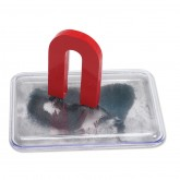 Magnet & Case with Iron Filings