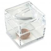 Bug Box Magnifier