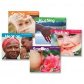 Five Senses Book Set