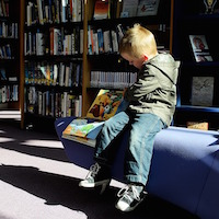 Boy with a book at the library