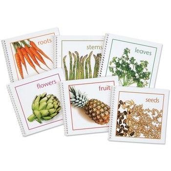Plants We Eat Complete Set