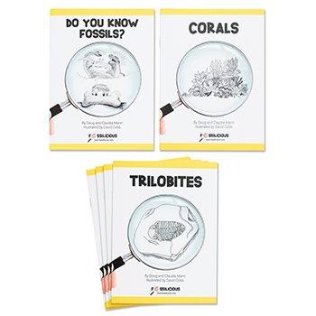 Fossils Set
