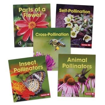 Pollination Set