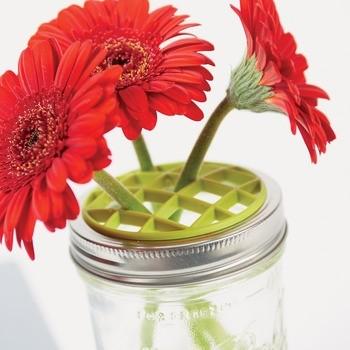 Jarware Flower Frog